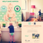 Honest Company Hippo Diapers