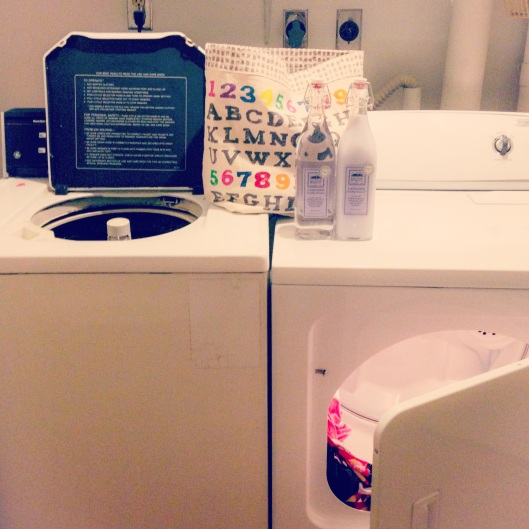 My Strange Family Laundry