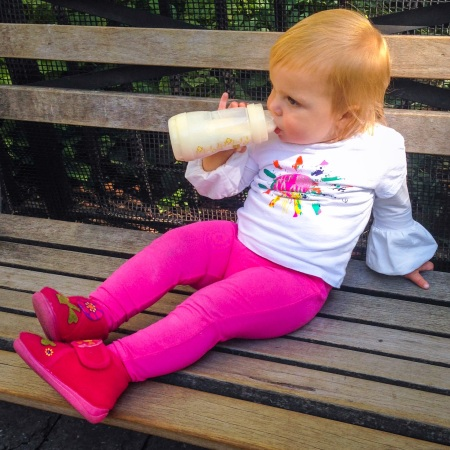 Picnic in Madison Square Park