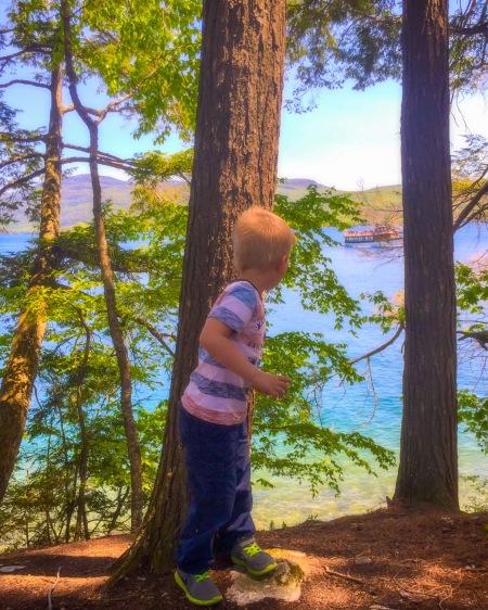 The Sagamore Nature Trail