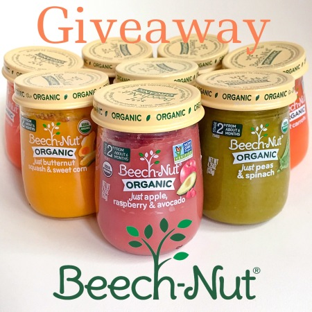Beech-nut baby food giveaway