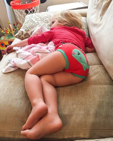 zoocchini panties